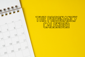 The Pregnancy Calendar – Importance during pregnancy